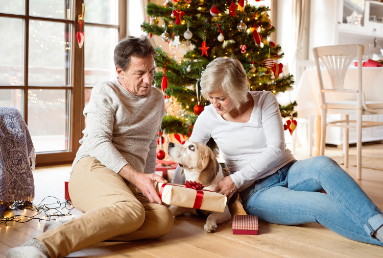 My Top 5 List of Gift Ideas for Pets | VetDERM Clinic