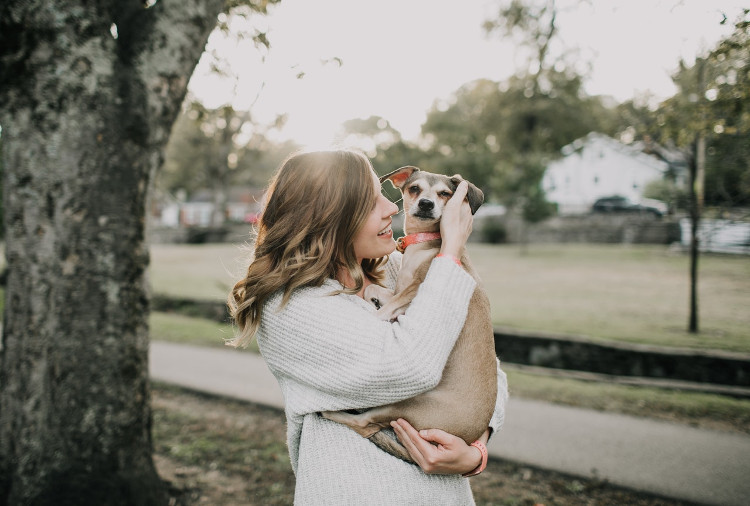 What You Need to Learn About Yeast Infections in Dogs | VetDERM Clinic