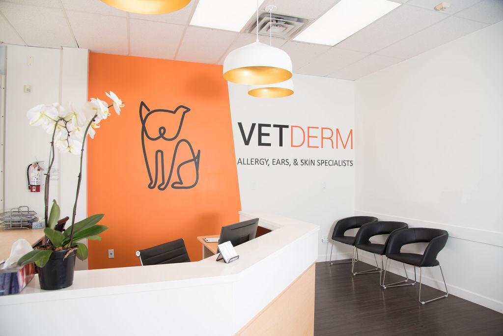 VetDERM Clinic Reception Desk in Main Office