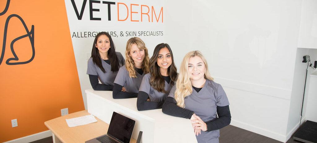 VetDermClinic-Surrey-16